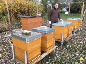 Bienen am Bruchsee